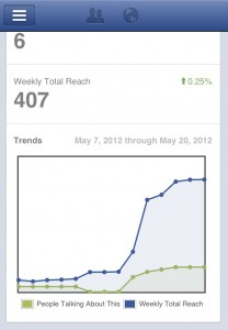 SEO Moves Facebook Pages Manager Insights View