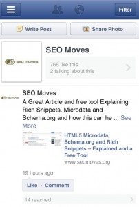 SEO Moves Facebook Pages Manager View
